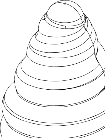 soffice-incanto-silikomart-3design